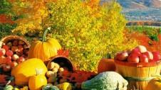 healthy-fall-recipes
