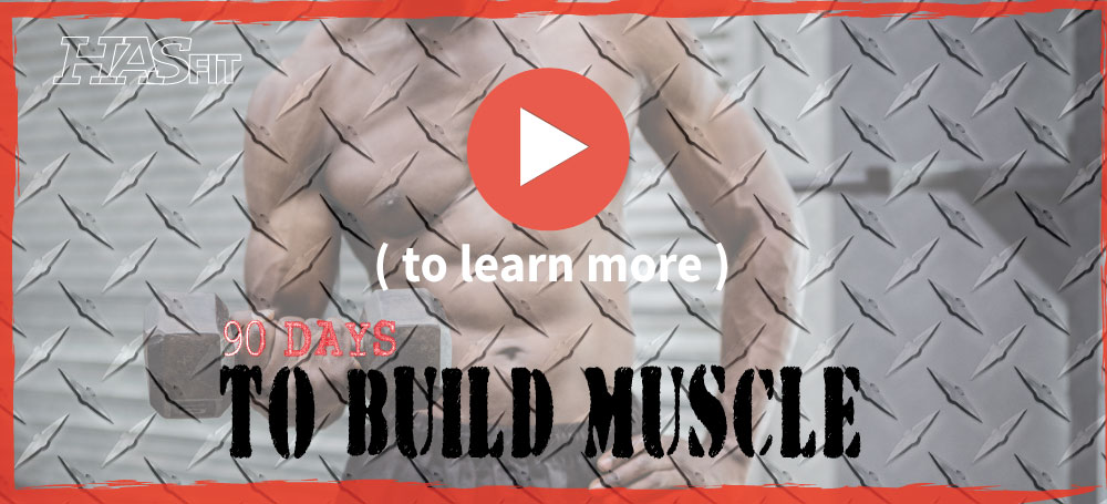Build Muscle Program HASfits Free 90 Day Workout Schedule