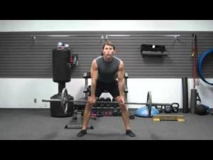 muscle building legs workout  bodybuilding leg exercises