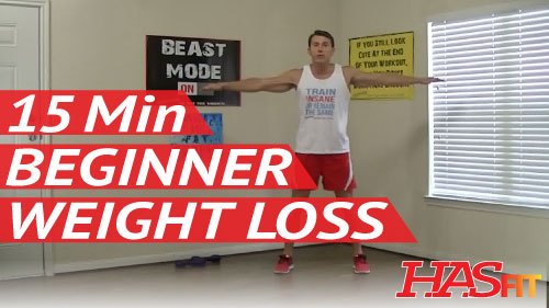 15 Minute Beginner Workout For Weight Loss Strength Easy Exercises Easy Workouts Exercise