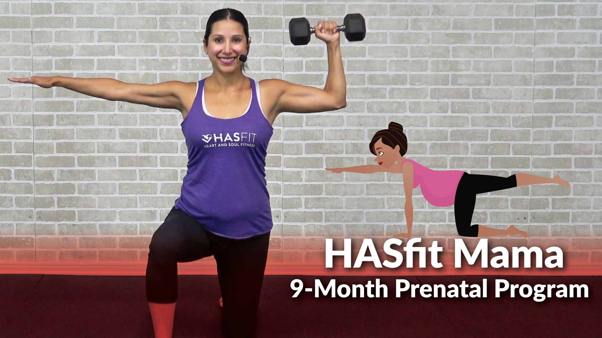 Prenatal Exercise Program